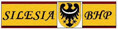 Kurs BHP, szkolenia BHP od Silesia BHP Wrocław i okolice